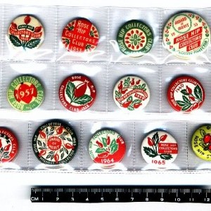 Rose Hip Collectors Club 1950-60s