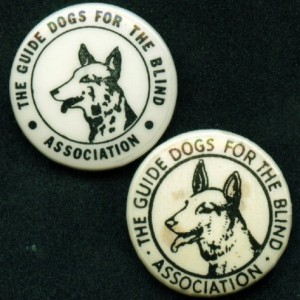 Logo badge from Guide Dogs
