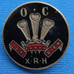 10th royal Hussars Old Comrades Association Lapel